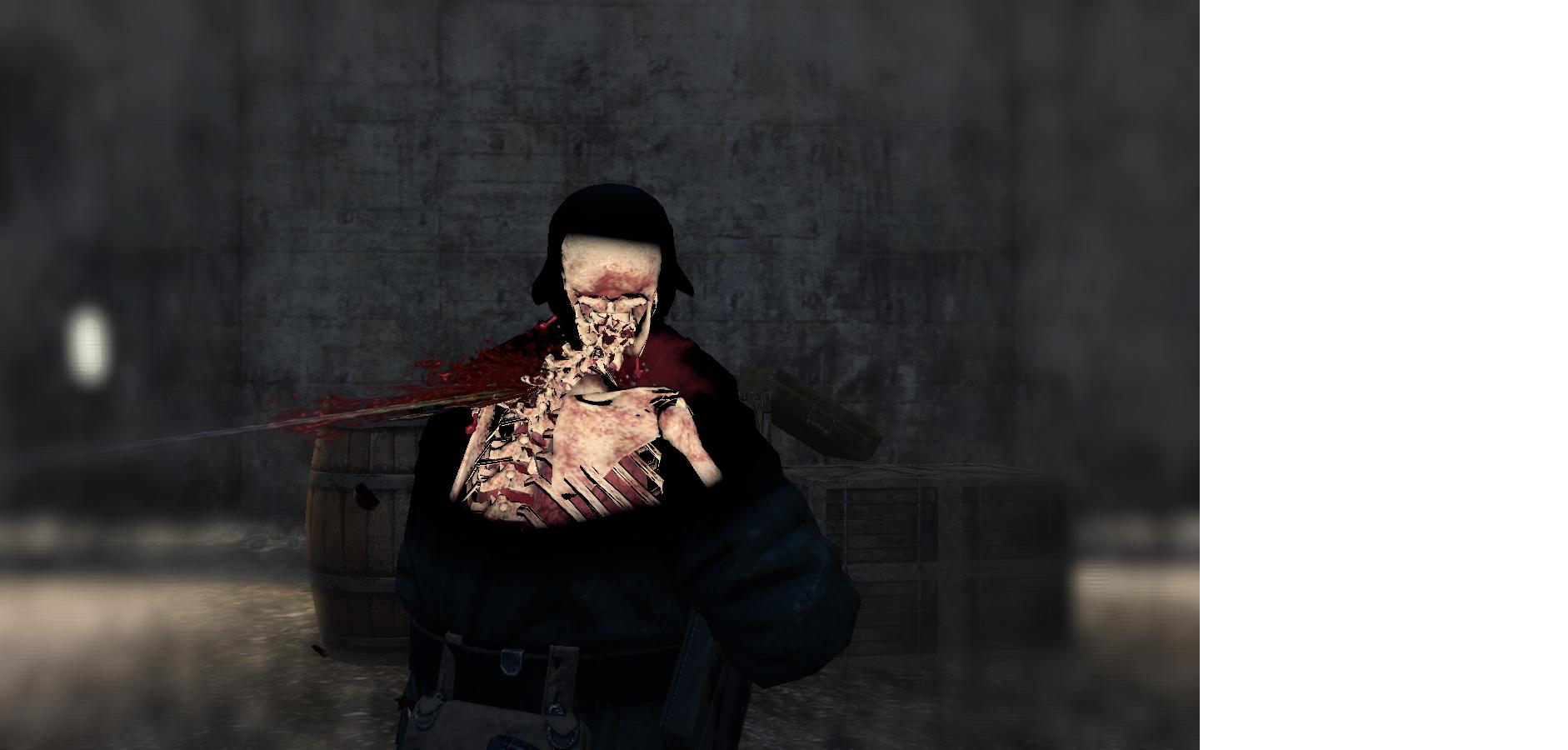 Sniper elite headshot