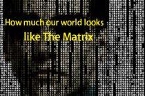 Matrix - real or not
