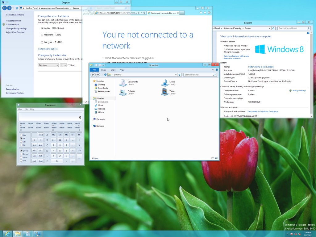 Windows 8 Release Preview Screenshots
